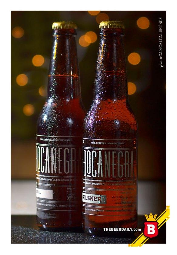 Los dos estilos de Bocanegra, cerveza artesanal Regiomontana