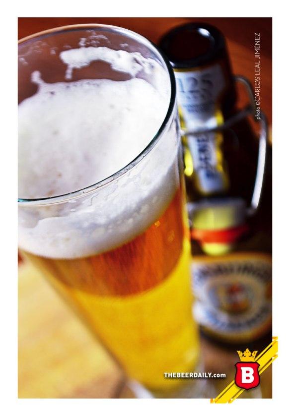 Una deliciosa imagen la de esta cerveza alemana en su vaso Pilsner
