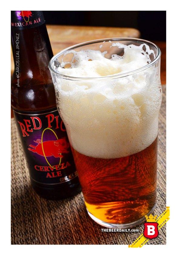 Así luce la Red Pig, una sabrosa cerveza Ale hecha en Baja California